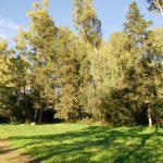Parques de Jerez